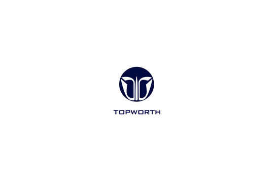 topworth group logo image